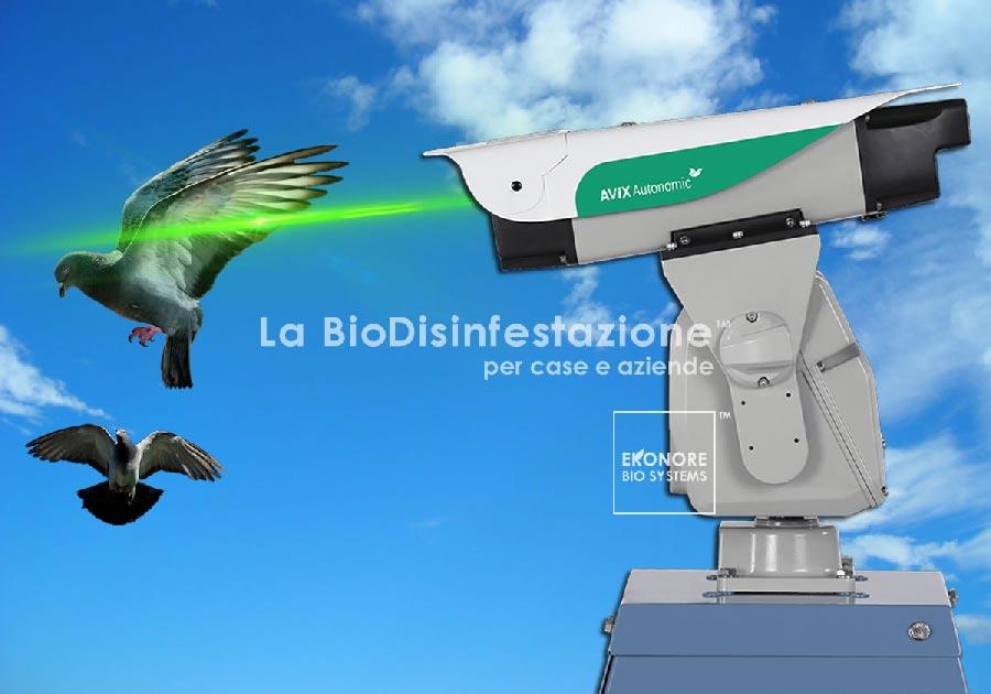 Dissuasore Laser allontanamento volatili Napoli