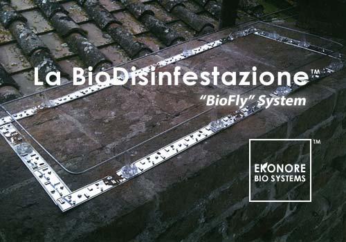installazione fili elettrificati per volatili piccioni Napoli